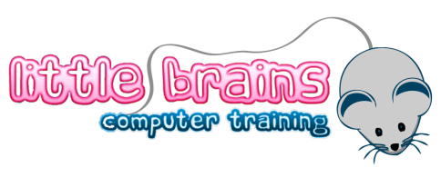 Little Brains Computer Training
